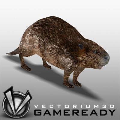 3D Model of Low Poly Game Ready Animals - Beaver - 3D Render 0