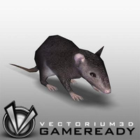 3D Model Download - Low Poly Animals - Rat